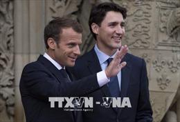 Cơ hội để G7 biến cam kết thành sức mạnh hành động