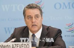 WTO cảnh báo gia tăng căng thẳng thương mại giữa Mỹ và đồng minh