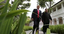 Tổng thống Trump chưa từng muốn 'nặng lời' với nhà lãnh đạo Triều Tiên