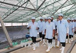 Chủ tịch Quốc hội Nguyễn Thị Kim Ngân thăm và làm việc tại tỉnh Bạc Liêu