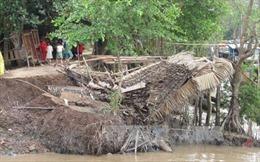 Sóc Trăng: Sạt lở ven sông Hậu nhấn chìm nhà dân