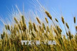 Nước Mỹ đứng trước nguy cơ của một cuộc khủng hoảng tài chính nông nghiệp