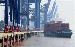 'Dở khóc dở cười' với hàng ngàn container phế liệu nằm cảng