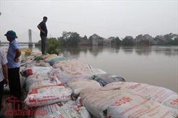 Chương Mỹ đang nỗ lực từng giây từng phút chống nước lũ, bảo vệ đê
