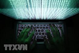 Căn cứ pháp lý để công dân chủ động bảo vệ quyền lợi trên không gian mạng