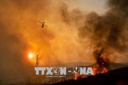 Hơn 100 đám cháy rừng trên khắp nước Mỹ