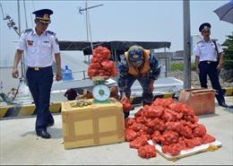 Gian nan chống buôn lậu trên biển