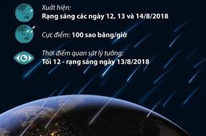 Mưa sao băng đẹp nhất năm xuất hiện vào rạng sáng 13/8