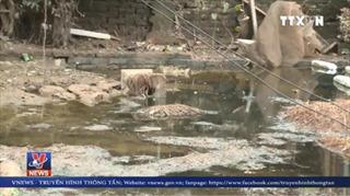 Nước lũ rút đi, người dân Nam Định căng thẳng lo bùng phát dịch bệnh