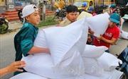 Xuất cấp gạo hỗ trợ nhân dân vùng mưa lũ Hà Tĩnh và Sơn La