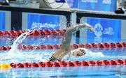 Ánh Viên, niềm hy vọng vàng 2017 của thể thao Việt Nam