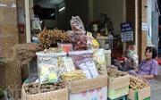 Tuần lễ Đông y giúp thu hút khách du lịch