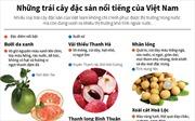 Những trái cây đặc sản nổi tiếng của Việt Nam