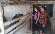 Nâng cao đời sống người dân huyện miền núi Anh Sơn
