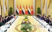 Thông cáo báo chí chung Việt Nam - Ai Cập