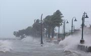 Siêu bão Irma đổ bộ: Một loạt dinh thự của ông Trump bị 'quái thú' đe dọa