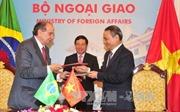 Phó Thủ tướng Phạm Bình Minh hội đàm với Bộ trưởng Ngoại giao Brazil