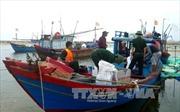 Xử lý nghiêm hành vi tàng trữ, sử dụng thuốc nổ để đánh bắt hải sản