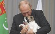 Tổng thống Nga Vladimir Putin hạnh phúc bên món quà sinh nhật bất ngờ
