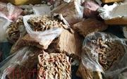 Hà Tĩnh tiêu hủy hơn 23 tấn nội tạng bốc mùi thối