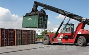 Phó Thủ tướng chỉ đạo xử lý trách nhiệm vụ 213 container 'mất tích'