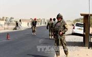 Ấn Độ lên án các vụ tấn công khủng bố ở Afghanistan