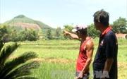 Phản hồi thông tin của TTXVN, Quảng Ngãi làm rõ sai phạm thu thuế đất tại Tịnh Hiệp