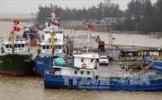 Bảo dưỡng tàu vỏ thép theo Nghị định 67 gặp khó khăn