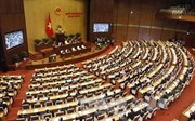 Những vấn đề đại biểu Quốc hội quan tâm tại kỳ họp thứ 4, Quốc hội khóa XIV