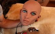 Robot tình dục sẽ 'sinh con' với chủ nhân?