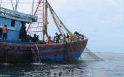 Cần quy định cấm đánh bắt thủy sản bất hợp pháp trong Luật Thủy sản