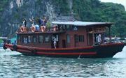 Quảng Ninh: Đình chỉ hoạt động các tàu du lịch không đảm bảo an toàn