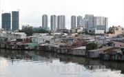 Bồi thường, giải phóng mặt bằng tại TP Hồ Chí Minh - Bài cuối: Hài hoà quyền lợi người bị thu hồi đất