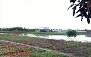 Diện tích tối thiểu để tách thửa tại TP Hồ Chí Minh sẽ giảm còn 36m2