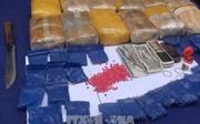Bắt đối tượng cầm đầu đường dây mua bán ma túy từ vùng biên về Hà Nội