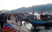 Xuất khẩu tôm mở ra nhiều cơ hội cho ngư dân Hà Tĩnh