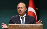 Thổ Nhĩ Kỳ kêu gọi thế giới công nhận Đông Jerusalem là thủ đô của Palestine