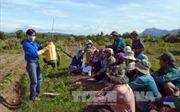 Nâng cao đời sống vùng đồng bào dân tộc thiểu số Ninh Thuận