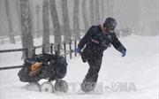 Bão tuyết hoành hành tại Mỹ, hàng nghìn hộ sống trong cảnh mất điện