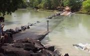 Video cá sấu hung hăng cướp chiến lợi phẩm của người câu cá