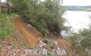 Bờ sông Thạch Hãn sạt lở nghiêm trọng do nạn khai thác cát