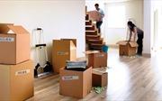 Những cách đơn giản giúp trang hoàng nhà cửa rực rỡ đón Tết