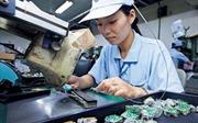 Nhiều cơ hội làm việc tại Nhật Bản cho lao động Việt Nam