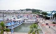 Quảng Ninh giám sát việc lập hóa đơn tài chính tại các cơ sở dịch vụ du lịch