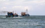 Tàu cá chết máy, trôi dạt trên biển, một thuyền viên ốm nặng