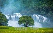 Lượng khách du lịch đến Trùng Khánh tăng trưởng mạnh
