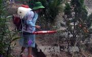 Tăng cường phòng, chống dịch bệnh sau mưa lũ
