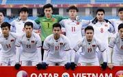 VFF sở hữu quyền thương mại đối với các Đội tuyển Bóng đá quốc gia