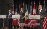 Canada dự định đàm phán FTA với Mercosur