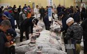 Hàn Quốc theo đuổi vụ kiện tại WTO về hải sản của Nhật Bản